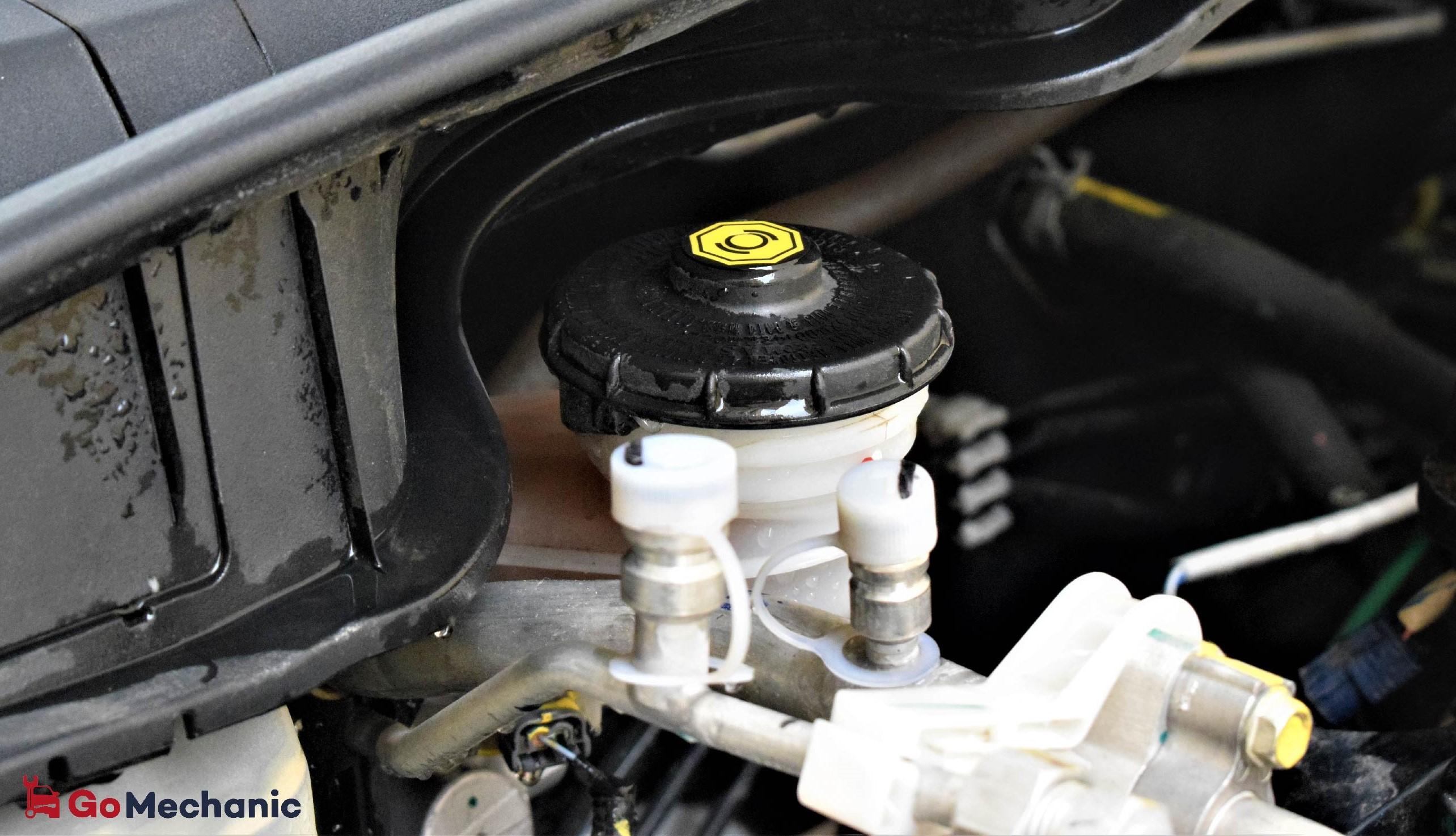 Car Fluids | Steering Fluid